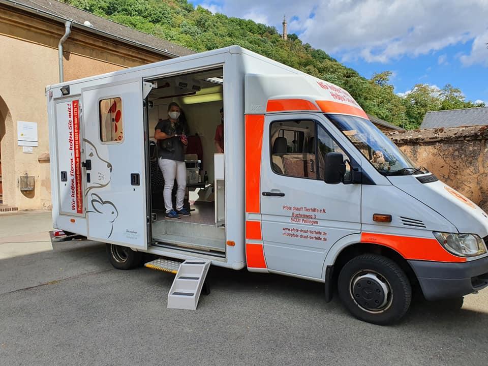 Pfote drauf-Tierhilfe e.V. Trier, Pfotenmobil, mobile Tiearztsprechstunde